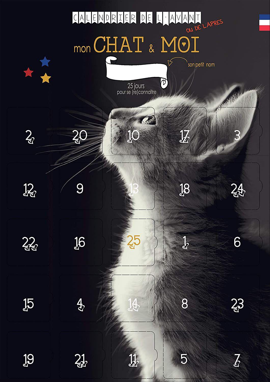 Calendrier de l'Avent pour chat