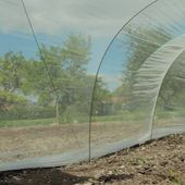 Comment installer un voile anti-insectes