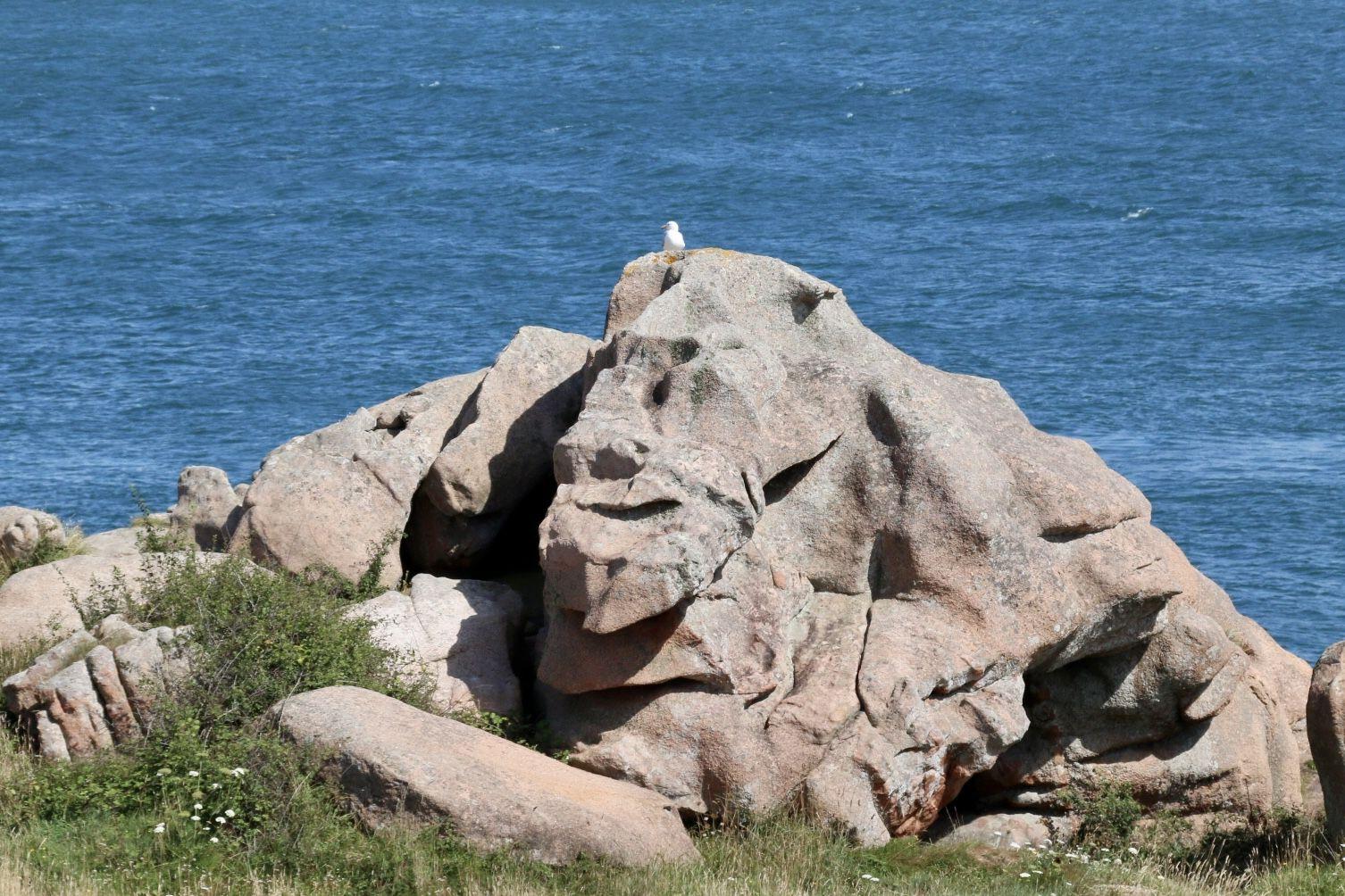 Les rochers de granit roses de Ploumanac'h