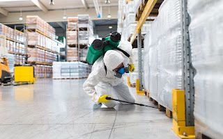 Do Eco Friendly Pest Control Company Proffer Effective Solutions?