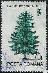 Les arbres et la forêt