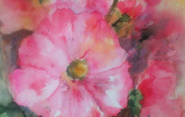L'été, les roses trémières du jardin !