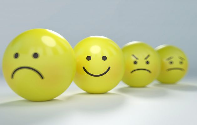 La gestion des émotions, c'est quoi ?