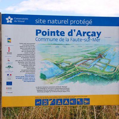 La Pointe d'Arçay