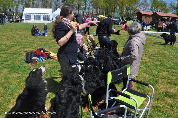 """famille macmanouche.com :""""46ème sortie (4/7)"""""""
