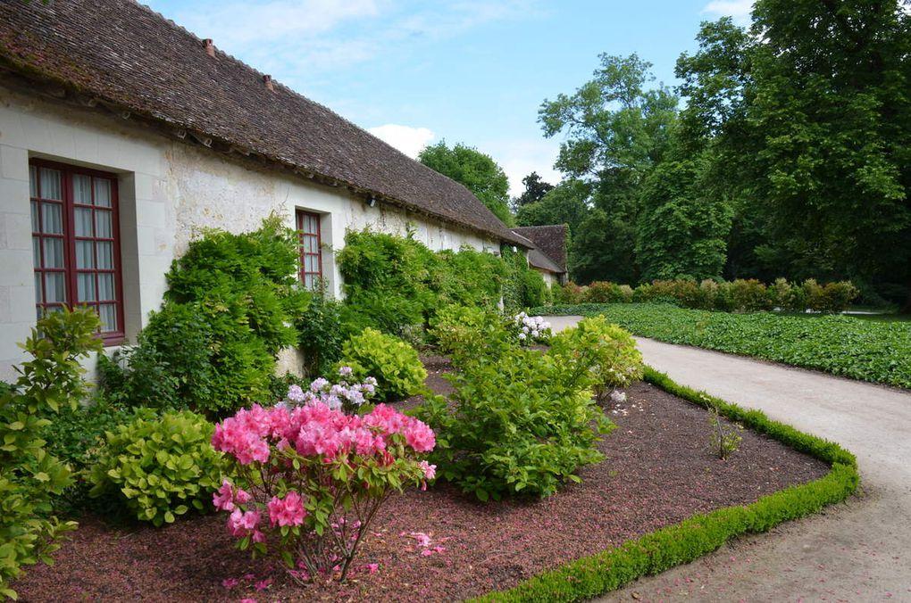 Week-end Chenonceaux, Montgolfière, Maison troglodyte et champignonière