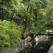 Kyoto - Chemin de la philosophie - LANKAART
