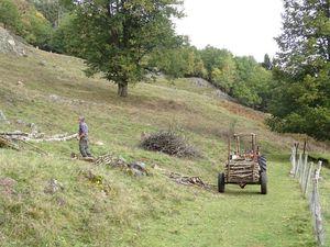 Balade dans les Vosges (1)