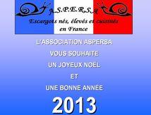 Bonnes fêtes de fin d'année et bonne année 2013 !
