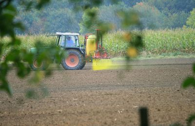 Pour en finir avec les pesticides