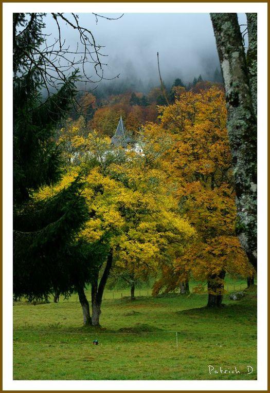 Début novembre 2014, val de Tamié (Savoie)