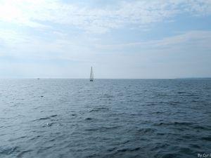 Le voilier (1)
