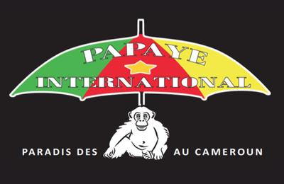 Association Papaye...des News !