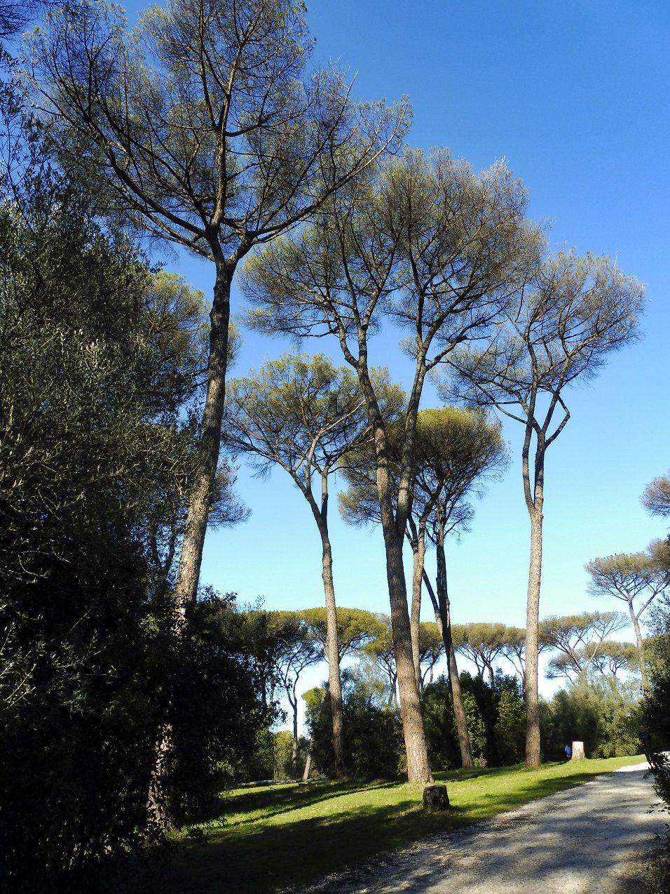 Un autre parc romain?