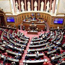 REFORME DES RETRAITES Pendant que nous sommes emprisonnés sous le vocable «CONFINEMENT» le Sénat nous frappe lâchement!!!