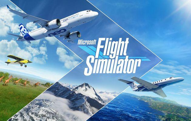 [TEST] MICROSOFT FLIGHT SIMULATOR PC : Le monde entier s'offre à nous !