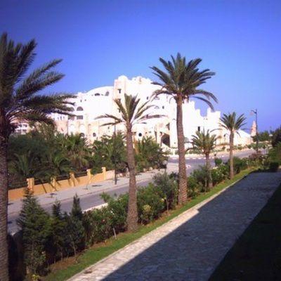 Yasmin Hammamet : la zone, les activités, l'hébergement