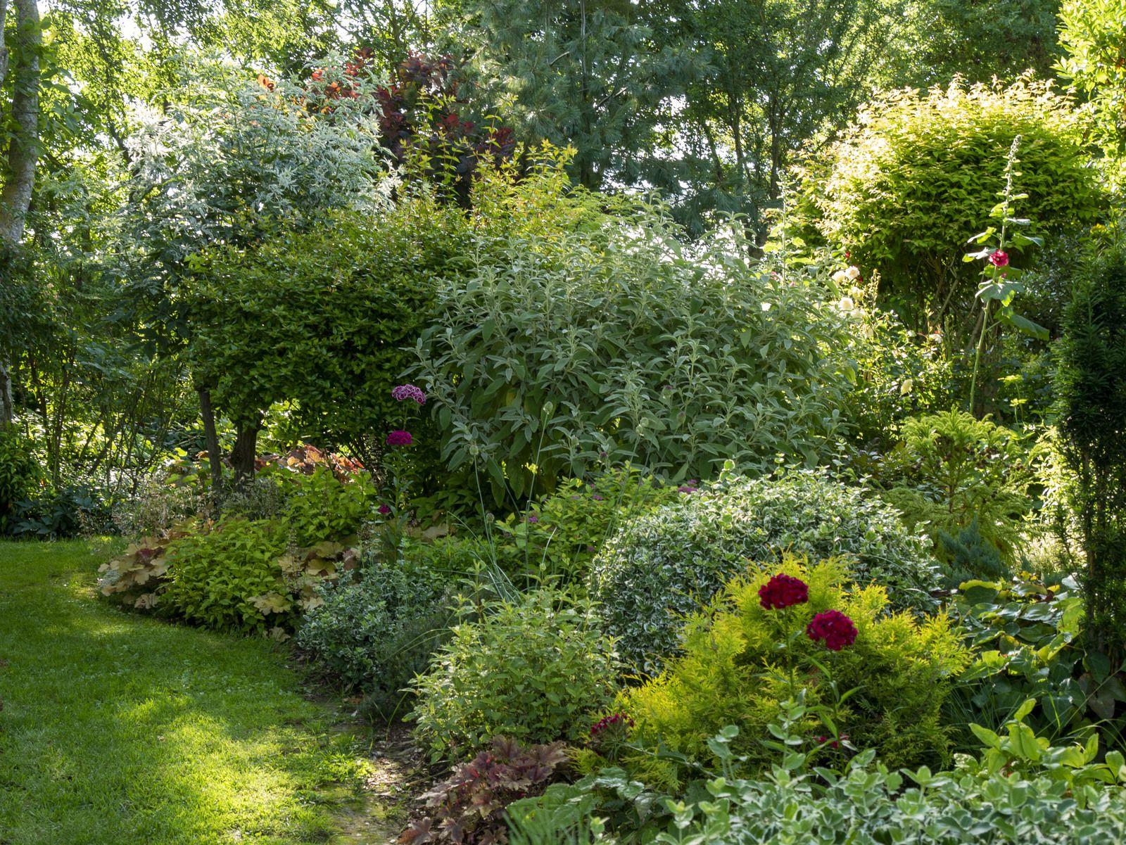 Les dépressions s'enchaînent et le jardin se déchaîne