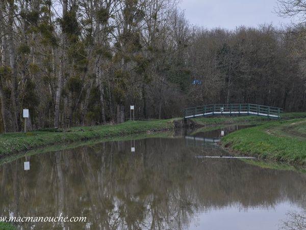 Ponts sur le canal.