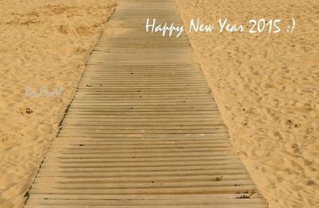 Bonne année 2015 :)