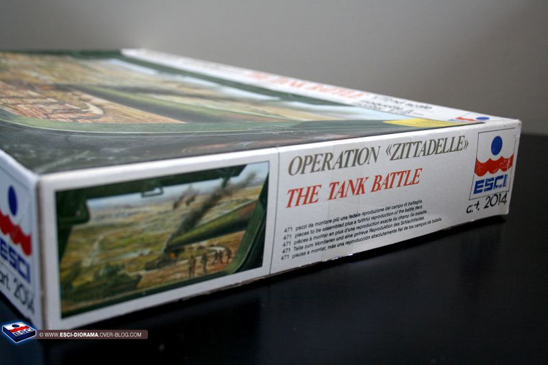 Album - esci 2014 - Operation Zittadelle, The tank battle