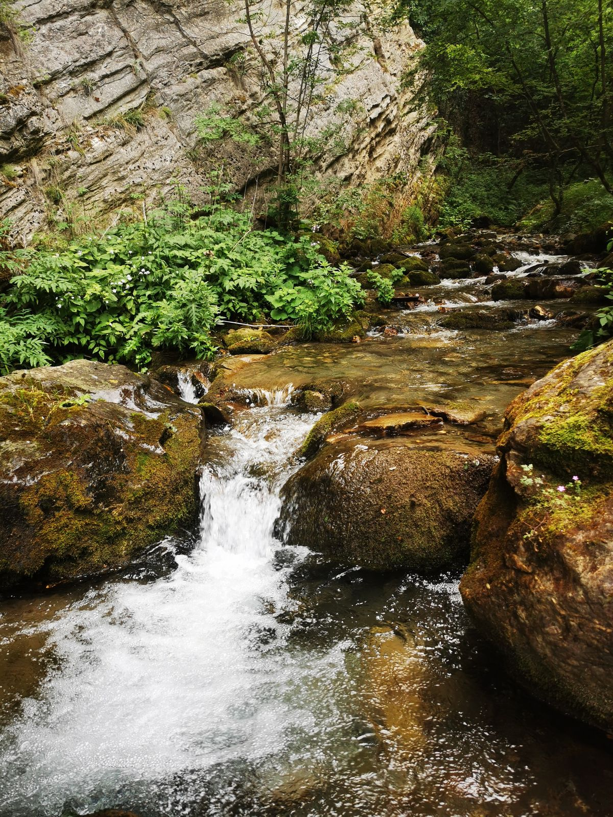 Lundi 26 juillet : monastère Saint-Jean Bigorski et Duf Waterfall