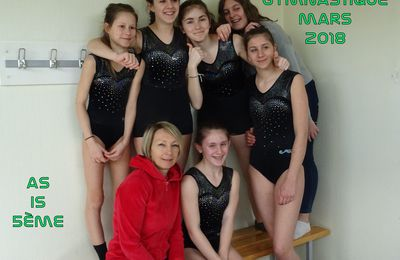 CHAMPIONNAT DEPARTEMENTAL GYMNASTIQUE 2017/2018