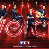 Auditions de The Voice : quand Amel Bent se retourne et découvre Vanina, qui a été sa choriste. - Leblogtvnews