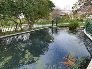 Entre le jardin Alexandre 1er et Le Palais Vauban