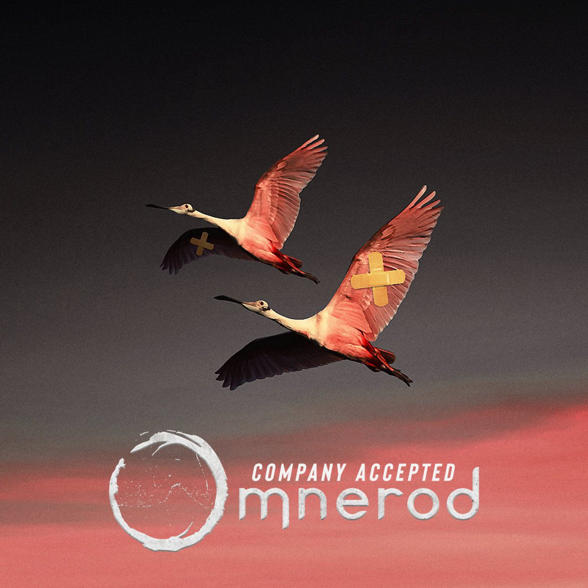 🎵 'Company accepted' - New release from OMNEROD