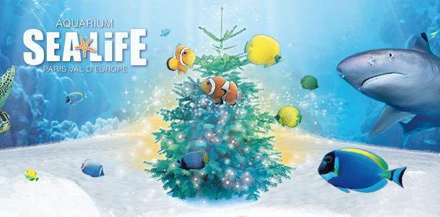 [Sortir] Sea Life : des animations par milliers pendant les vacances de Noël (+ concours FB)