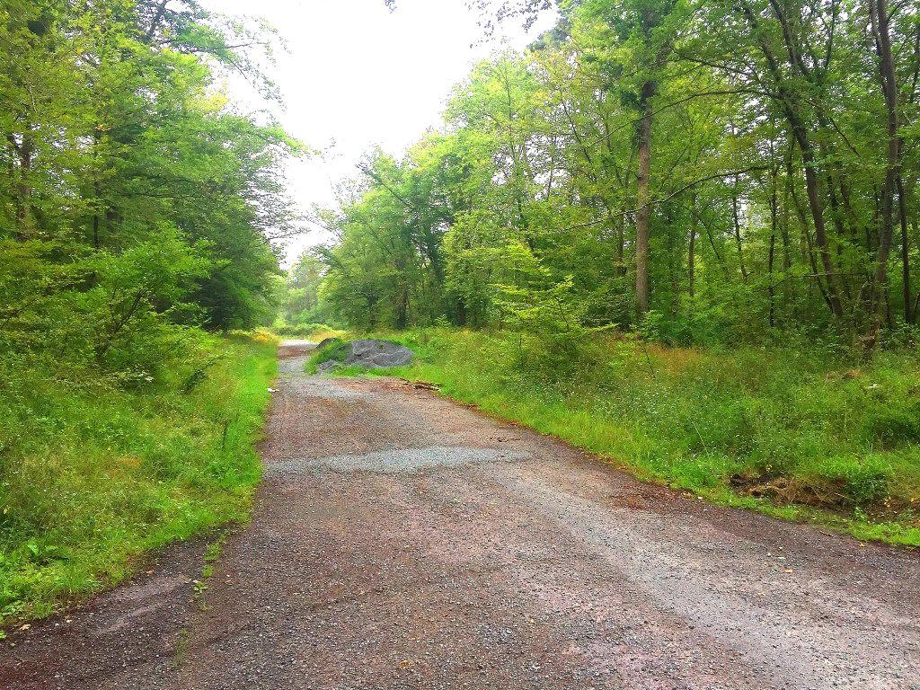 carrefour_Chemin des Meuniers_Route des Prés de la Brévière