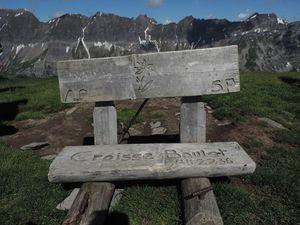 Myosotis et Mont Blanc et le petit banc du sommet pour récupérer !