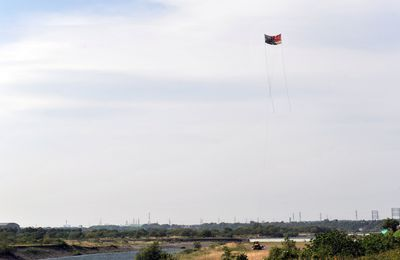 Large kite-flying of Sagami 1