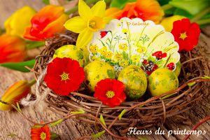 Fleurs du printemps…