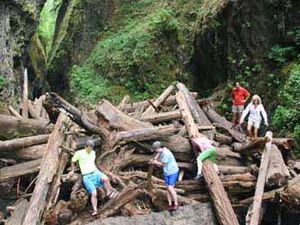 The logjam on Oneonta Gorge - dangerous crossing - photos & Tripadvisor Word of waterfalls
