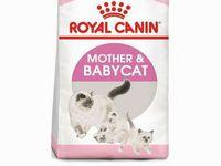 Besoin de croquettes ROYAL CANIN MOTHER BABY pour nos mamans et leurs bébés