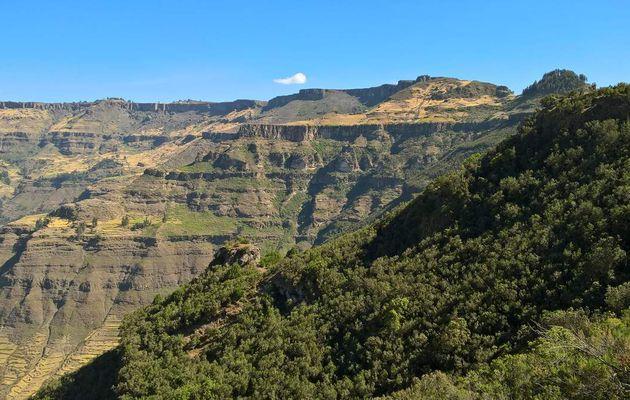 Pourquoi ce titre: le semeur d'Ethiopie, la dépêche du toit de l'Afrique