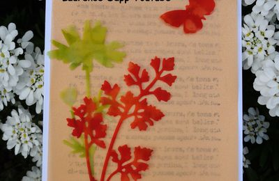 LOT QUIETUDE CHAMPETRE,STAMPIN'UP!.