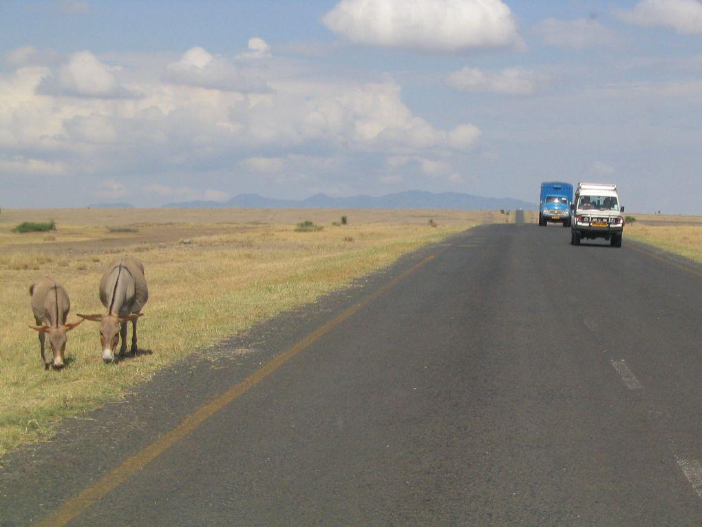 Arrivée en Tanzanie - Arusha