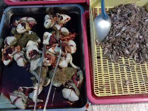 Vu au marché (19-08) - Les insectes.