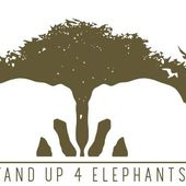 Stand Up 4 Elephants | Chitwan Nepal | Elephant Welfare NGO