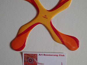 Les 3 modéles de boomerangs et une modification possible du Quadripale.