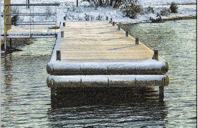 72 - Lac de la Gèmerie - Arnage - Sarthe