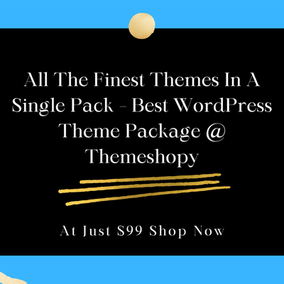 What Makes WordPress Theme Bundle So Popular And Most Sought After