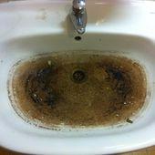 Allons nous laver les mains à la faculté...