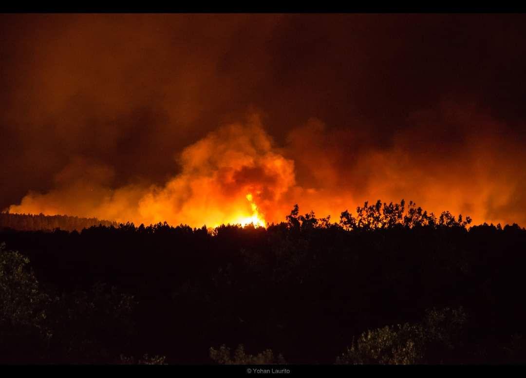 premier feu de foret très sérieux dans le sud au départ de gonfaron
