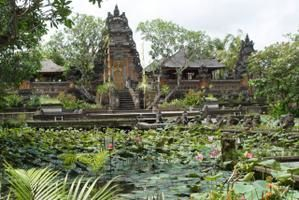 Episode 3: Ubud and Beyond...