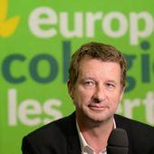 """Jadot veut incarner """"l'écologie de gouvernement"""", favorable à """"la libre entreprise et l'économie de marché"""""""