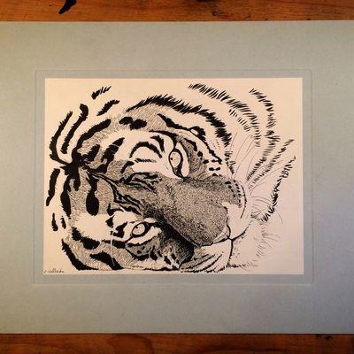 *portraits d'animaux* - originaux en vente